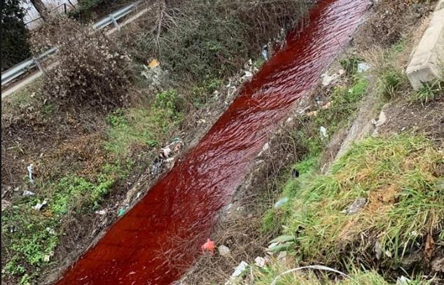Серава обоена во црвено, кој и што истурил во скопската река?!